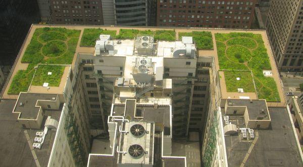 techos-verde-Chicago